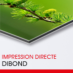 tirage Plexi'Dark -> Dibond